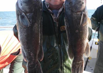 blackfish-2